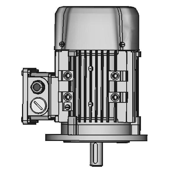 IM 3011/V1 FF100 (A120) Flansch ohne Schutzdach